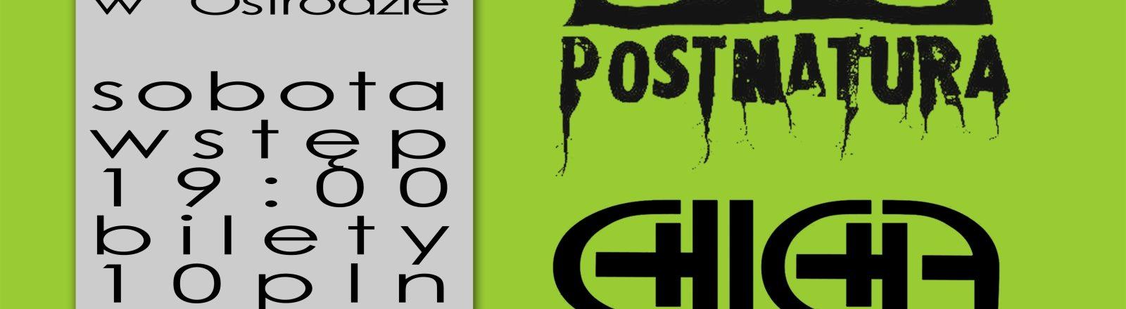 Koncert dla Agenta // Postnatura / Chicha / Bohema