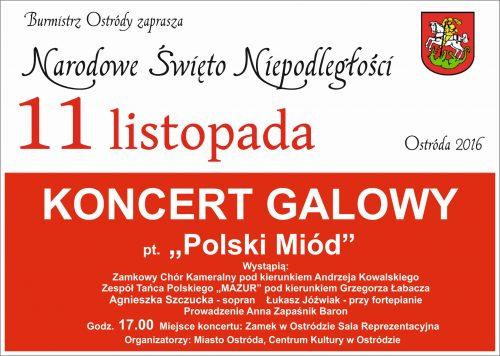 1-koncert-galowy